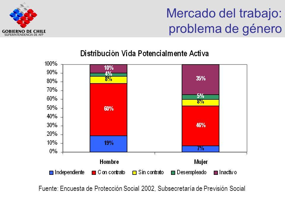 Mercado del trabajo: problema de género Fuente: Encuesta de Protección Social 2002, Subsecretaría de Previsión Social