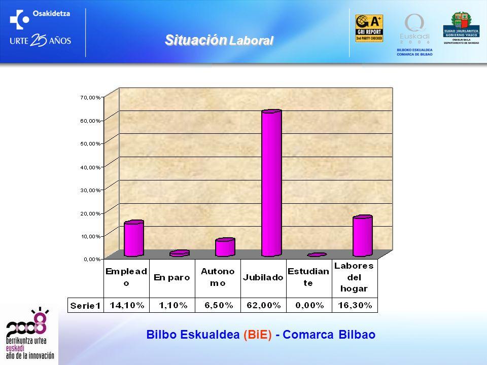 Situación Laboral Bilbo Eskualdea (BiE) - Comarca Bilbao