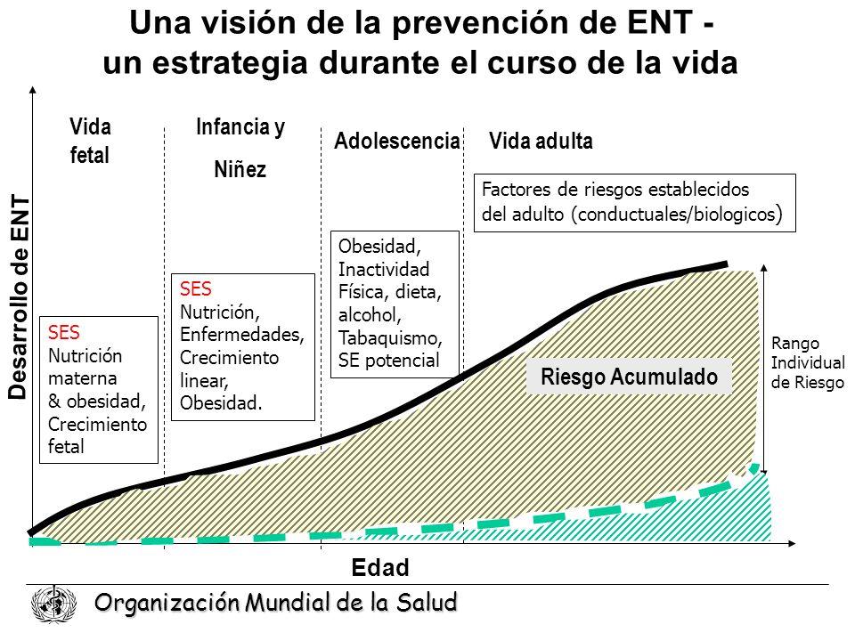 Organización Mundial de la Salud Una visión de la prevención de ENT - un estrategia durante el curso de la vida Edad Desarrollo de ENT Vida fetal Vida