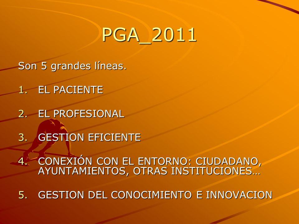 PGA_2011 Son 5 grandes líneas. 1.EL PACIENTE 2.EL PROFESIONAL 3.GESTION EFICIENTE 4.CONEXIÓN CON EL ENTORNO: CIUDADANO, AYUNTAMIENTOS, OTRAS INSTITUCI