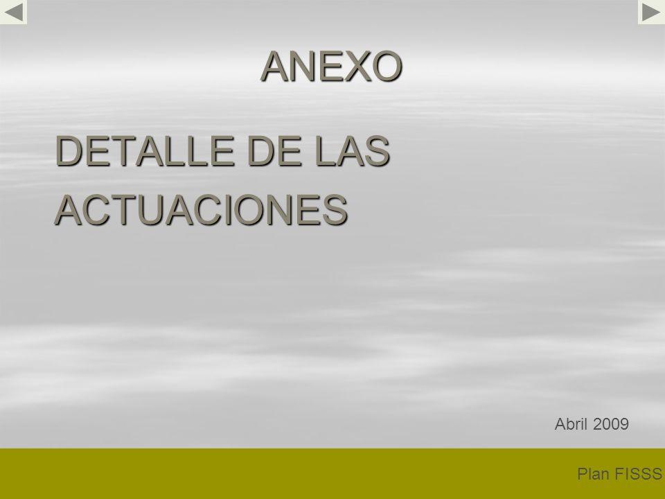 ANEXO DETALLE DE LAS ACTUACIONES Plan FISSS Abril 2009