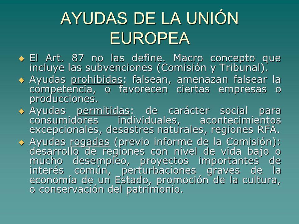 AYUDAS DE LA UNIÓN EUROPEA El Art. 87 no las define.