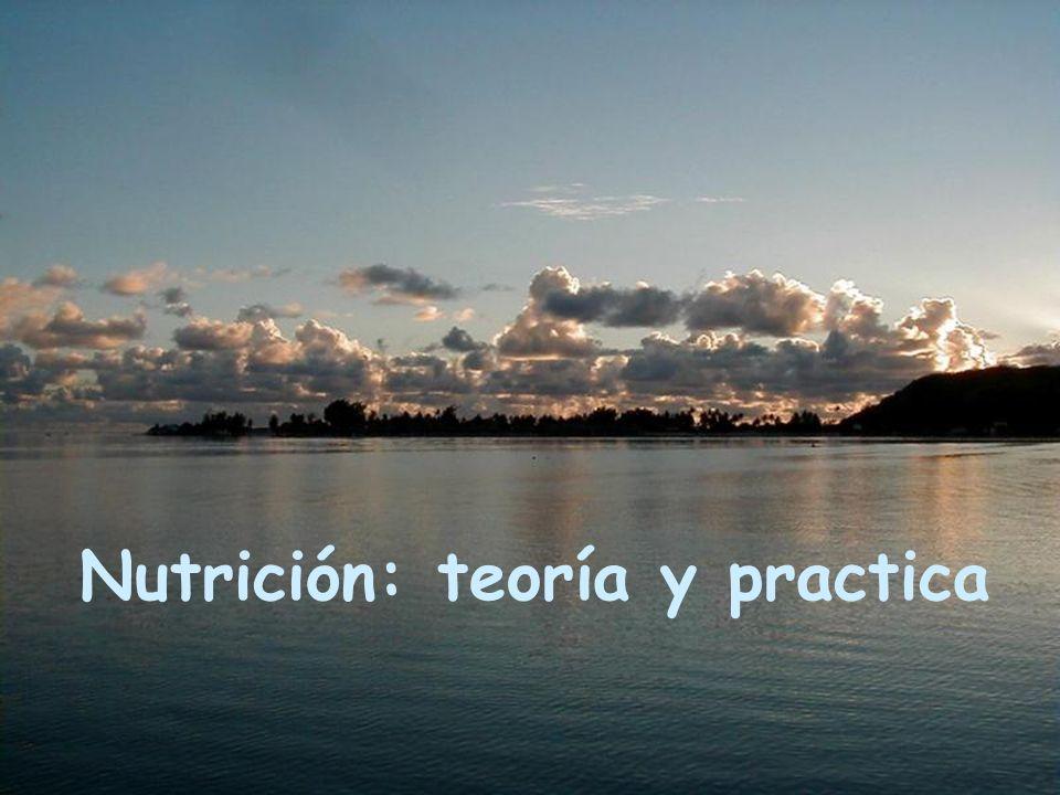 Nutrición: teoría y practica