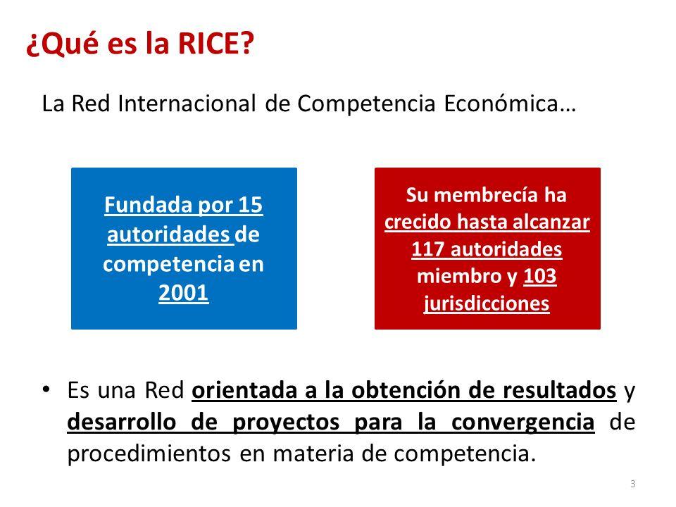 ¿Qué es la RICE? La Red Internacional de Competencia Económica… Es una Red orientada a la obtención de resultados y desarrollo de proyectos para la co