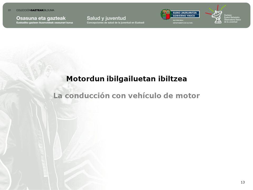 Motordun ibilgailuetan ibiltzea La conducción con vehículo de motor 13