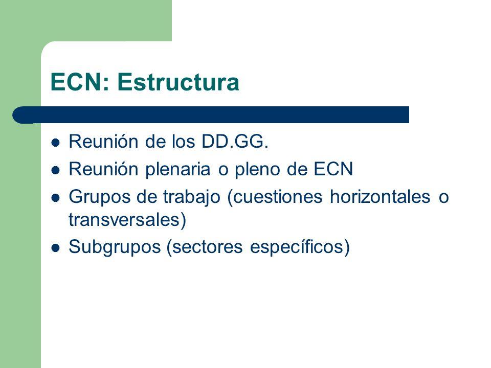 ECN: Estructura Reunión de los DD.GG. Reunión plenaria o pleno de ECN Grupos de trabajo (cuestiones horizontales o transversales) Subgrupos (sectores