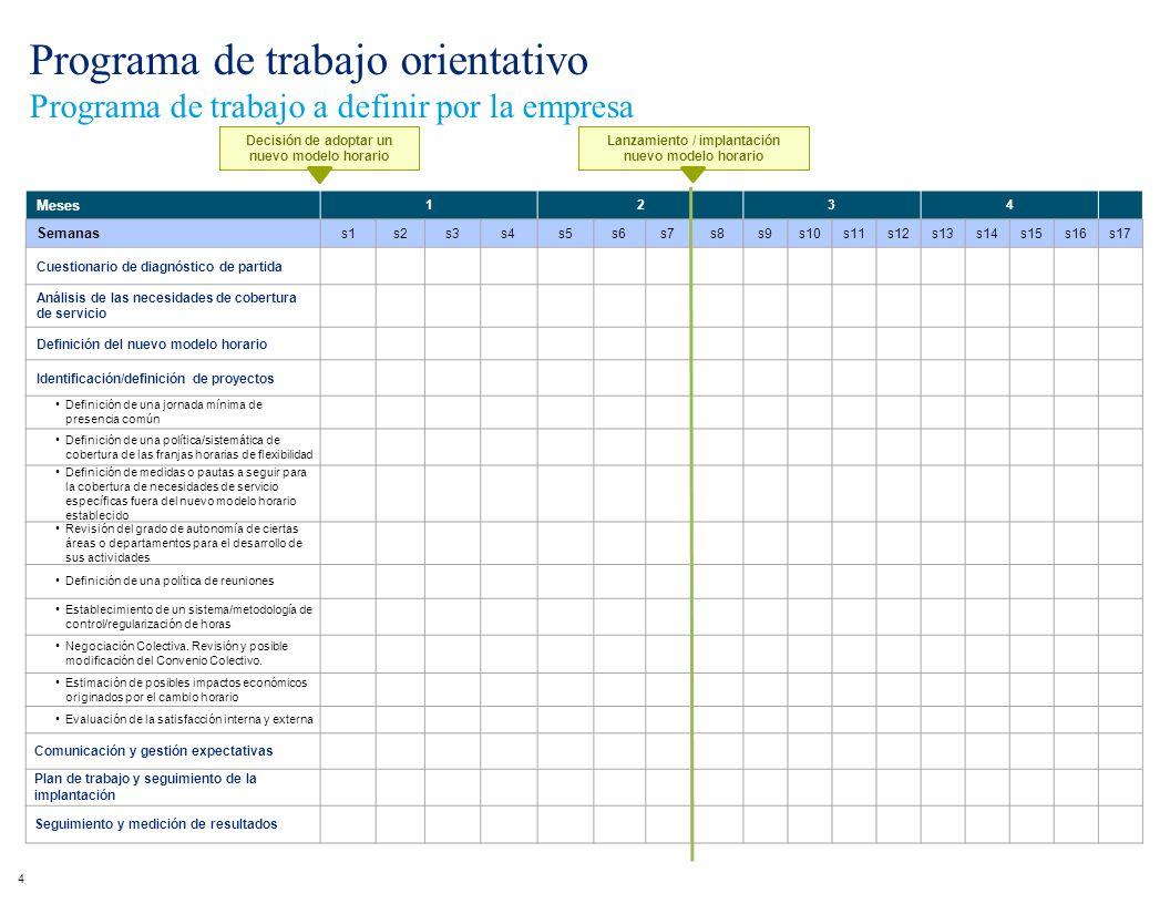 Meses 1234 Semanas s1s2s3s4s5s6s7s8s9s10s11s12s13s14s15s16s17 Cuestionario de diagnóstico de partida Análisis de las necesidades de cobertura de servi