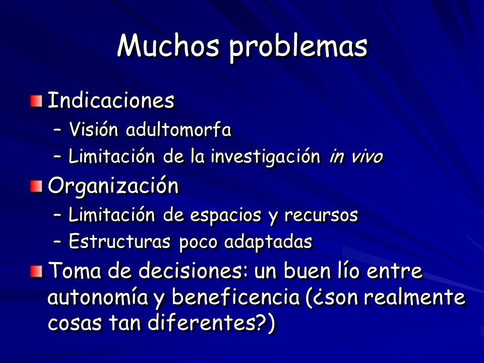 Muchos problemas Indicaciones –Visión adultomorfa –Limitación de la investigación in vivo Organización –Limitación de espacios y recursos –Estructuras