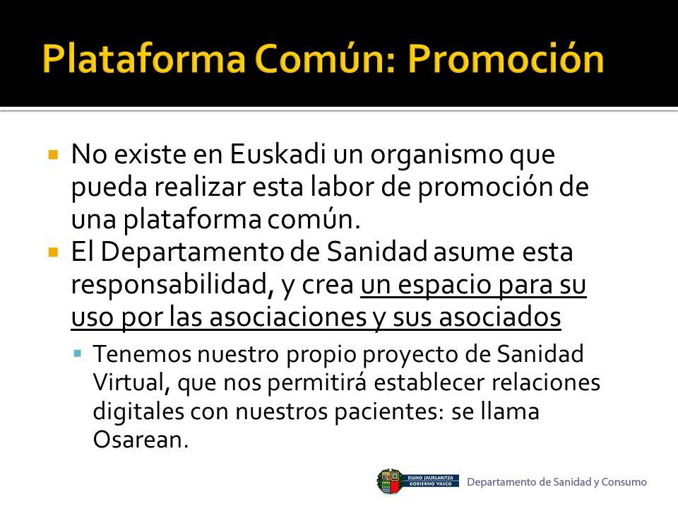 No existe en Euskadi un organismo que pueda realizar esta labor de promoción de una plataforma común.
