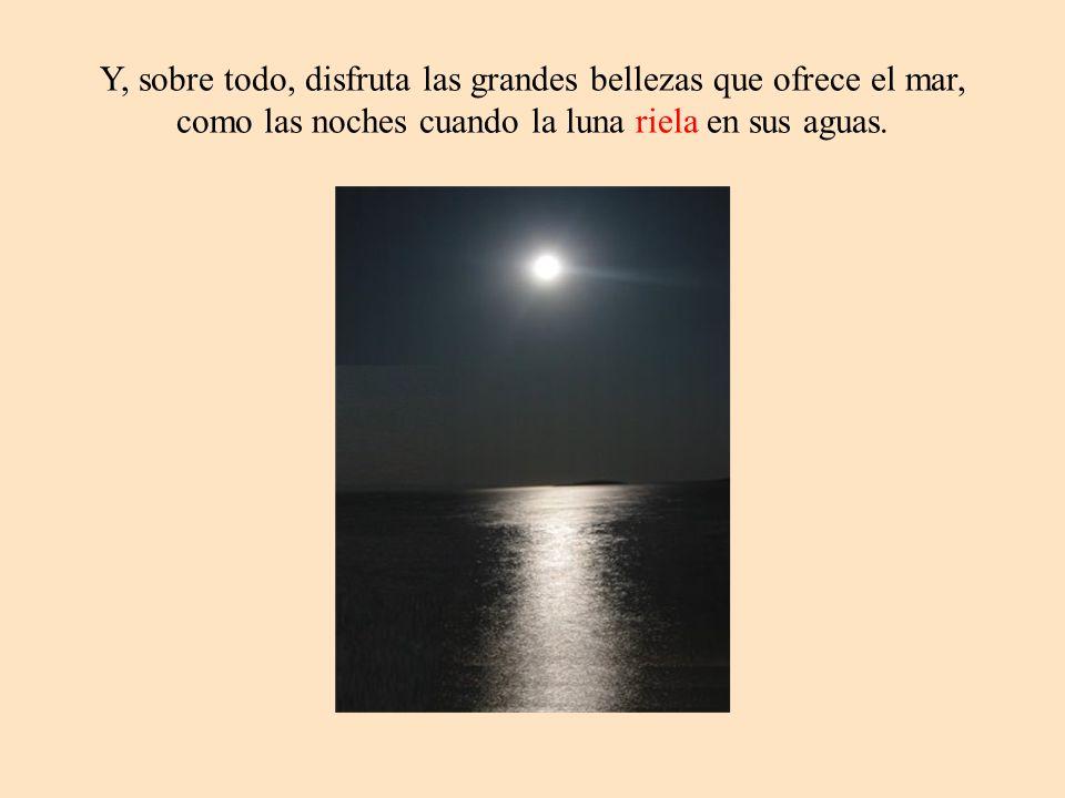 Y, sobre todo, disfruta las grandes bellezas que ofrece el mar, como las noches cuando la luna riela en sus aguas.