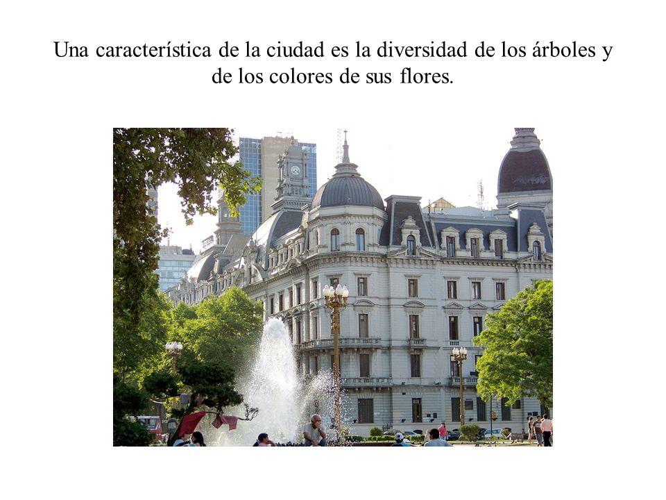 Una característica de la ciudad es la diversidad de los árboles y de los colores de sus flores.