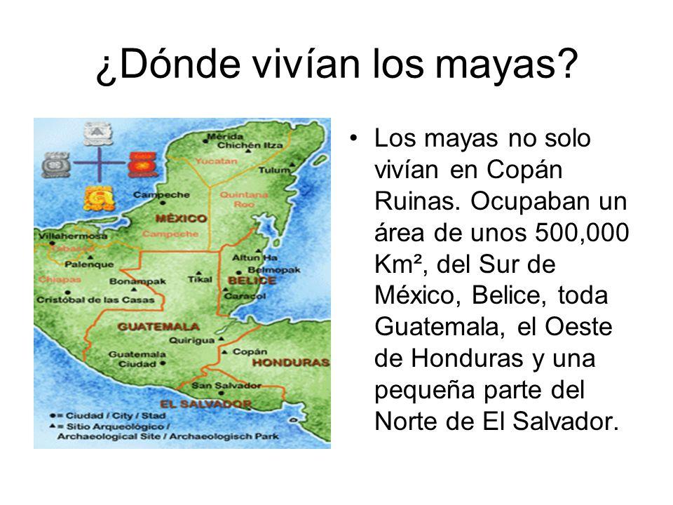 ¿Dónde vivían los mayas? Los mayas no solo vivían en Copán Ruinas. Ocupaban un área de unos 500,000 Km², del Sur de México, Belice, toda Guatemala, el