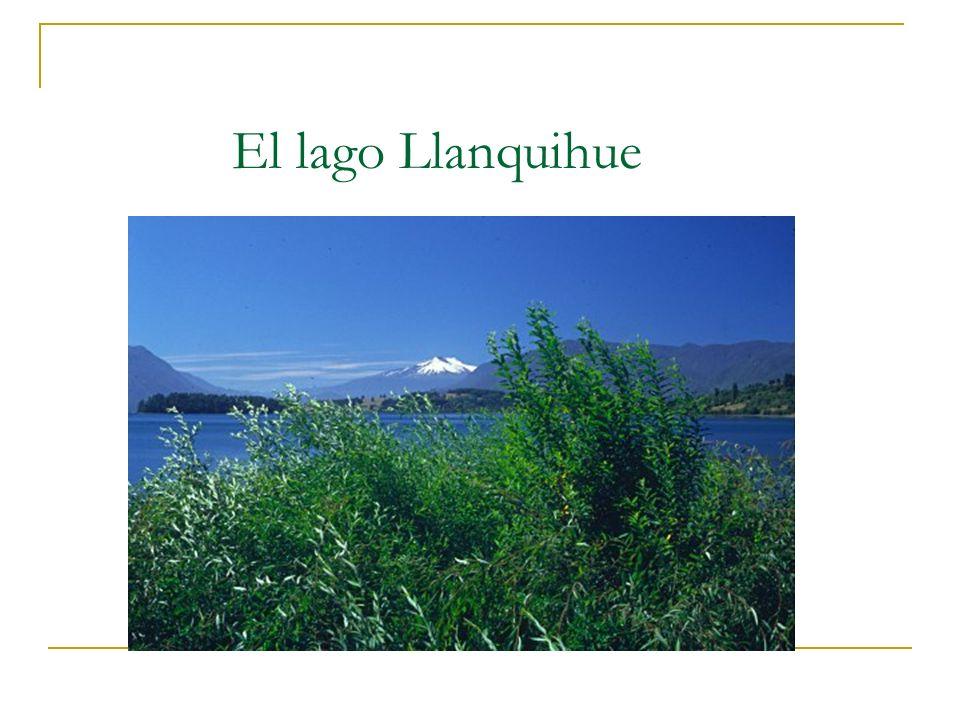 El lago Llanquihue El lago constituye un escenario de increible belleza natural. La gente suele acudir a sus riberas para disfrutar de la pesca.
