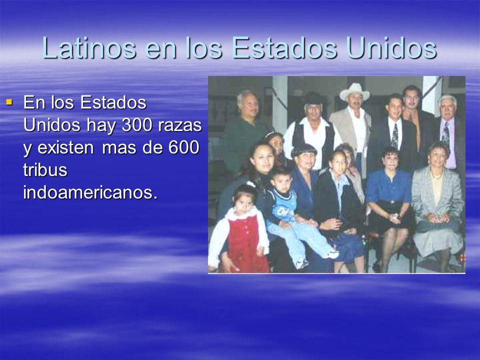 Latinos en los Estados Unidos En los Estados Unidos hay 300 razas y existen mas de 600 tribus indoamericanos. En los Estados Unidos hay 300 razas y ex