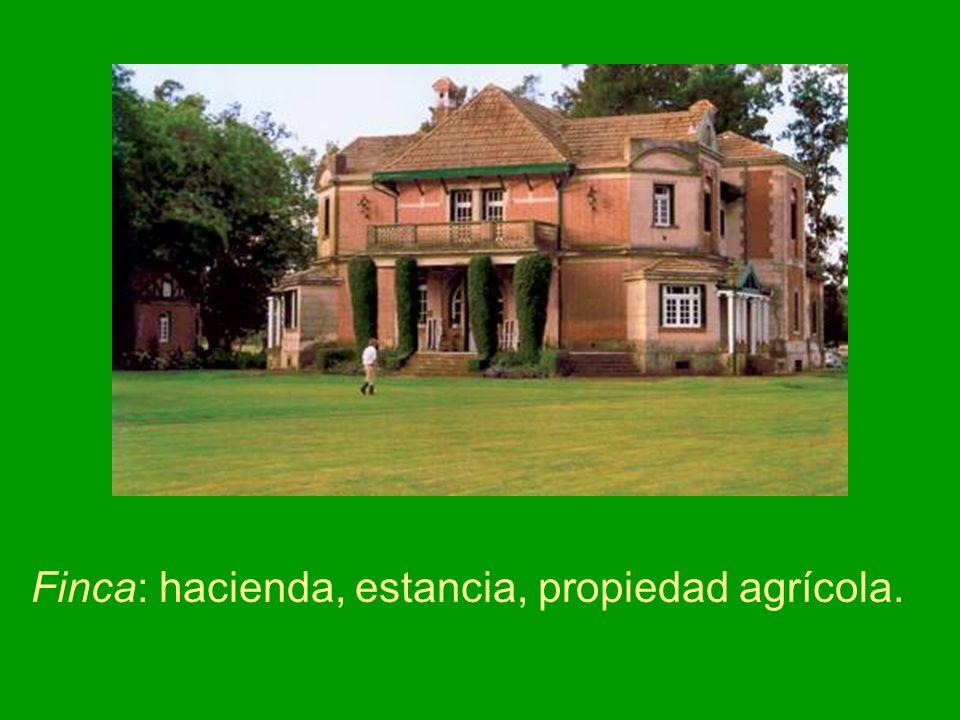 Finca: hacienda, estancia, propiedad agrícola.