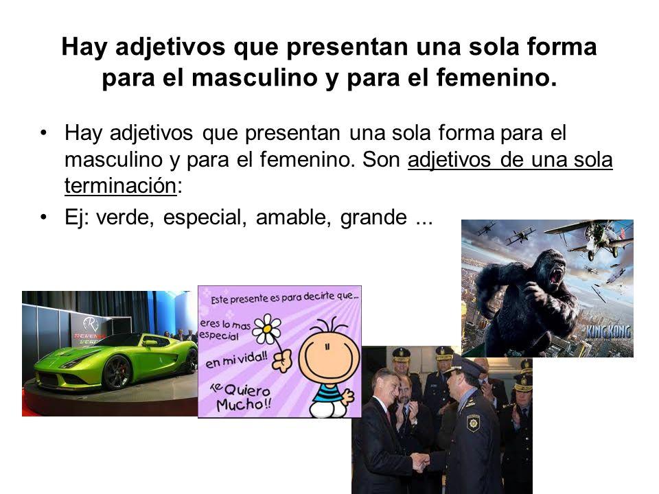 Hay adjetivos que presentan una sola forma para el masculino y para el femenino.