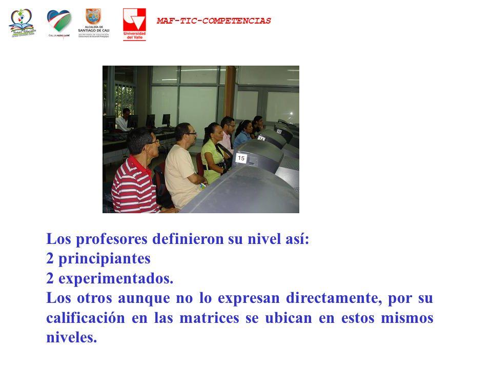 MAF-TIC-COMPETENCIAS Los profesores definieron su nivel así: 2 principiantes 2 experimentados. Los otros aunque no lo expresan directamente, por su ca