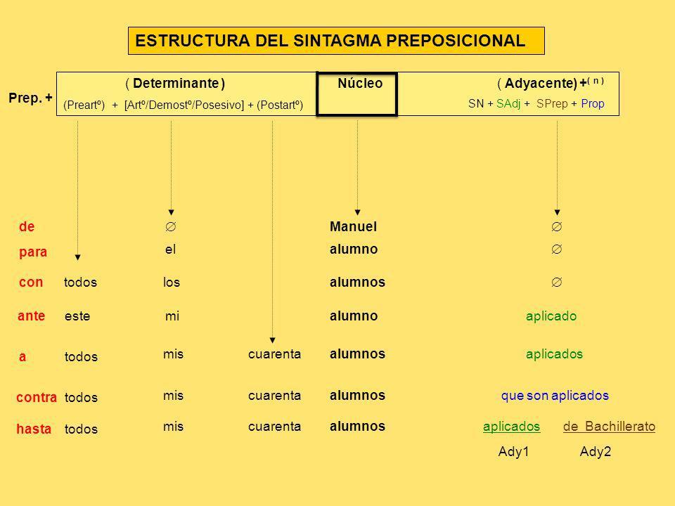 ESTRUCTURA DEL SINTAGMA PREPOSICIONAL ( Determinante ) Núcleo ( Adyacente) + ( n ) (Preartº) + [Artº/Demostº/Posesivo] + (Postartº) Manuel elalumno to