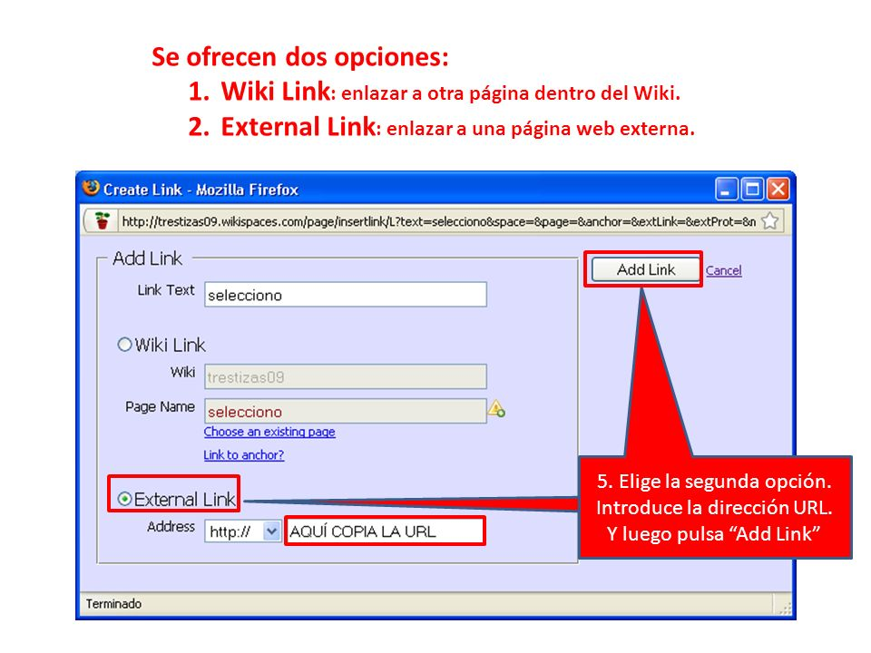 Se ofrecen dos opciones: 1.Wiki Link : enlazar a otra página dentro del Wiki. 2.External Link : enlazar a una página web externa. Elegir la segunda op