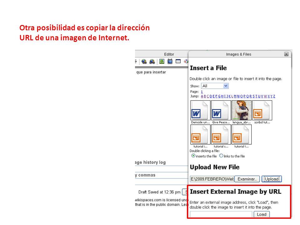 Otra posibilidad es copiar la dirección URL de una imagen de Internet.