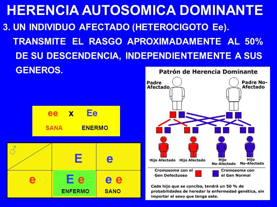 HERENCIA AUTOSOMICA DOMINANTE 3. UN INDIVIDUO AFECTADO (HETEROCIGOTO Ee). TRANSMITE EL RASGO APROXIMADAMENTE AL 50% DE SU DESCENDENCIA, INDEPENDIENTEM