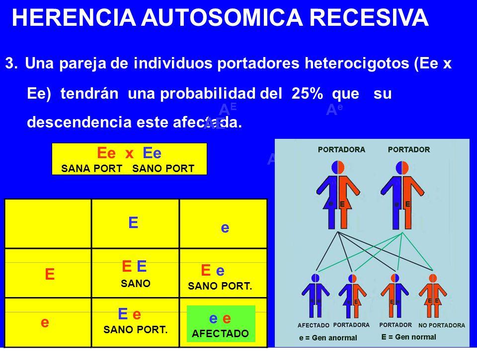 HERENCIA AUTOSOMICA RECESIVA 3. Una pareja de individuos portadores heterocigotos (Ee x Ee) tendrán una probabilidad del 25% que su descendencia este