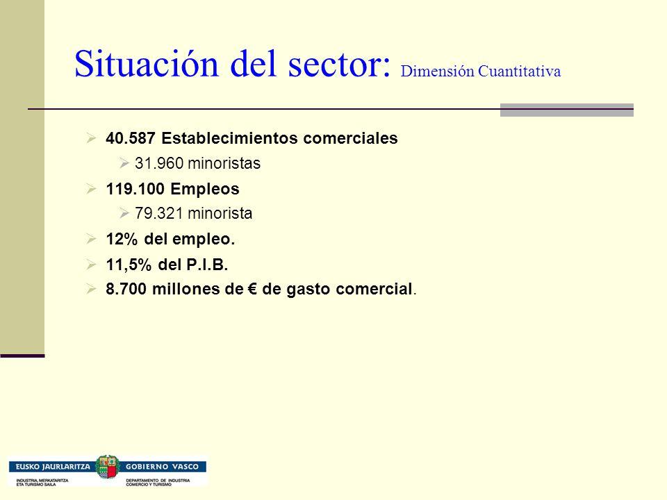 Situación del sector: Dimensión Cuantitativa 40.587 Establecimientos comerciales 31.960 minoristas 119.100 Empleos 79.321 minorista 12% del empleo.