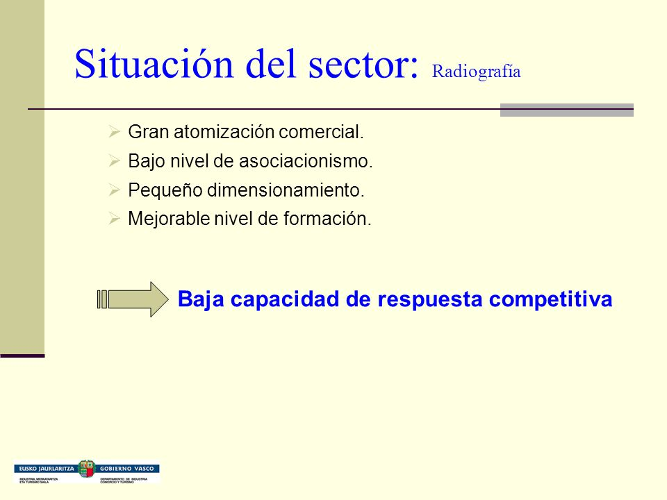 Situación del sector: Radiografía Gran atomización comercial.
