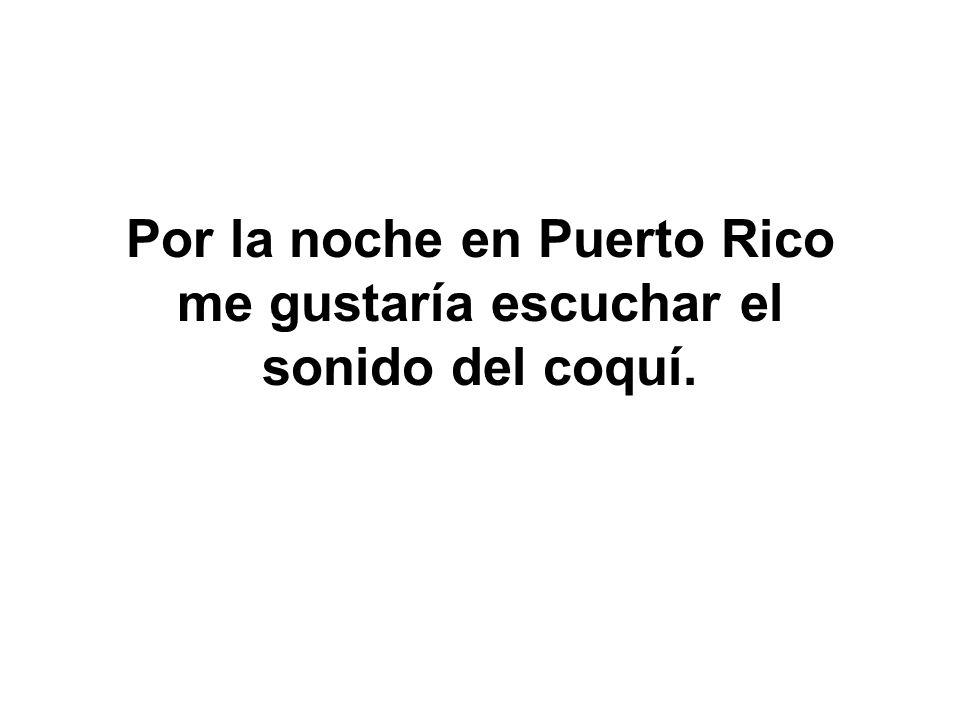Por la noche en Puerto Rico me gustaría escuchar el sonido del coquí.