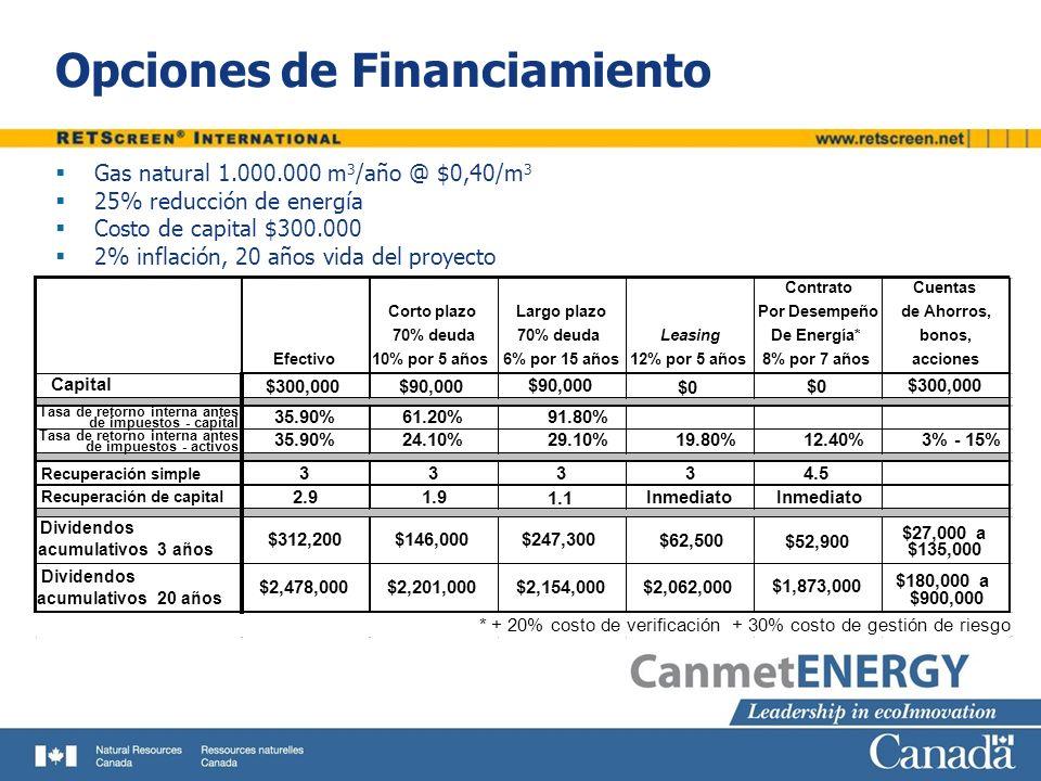 Opciones de Financiamiento Gas natural 1.000.000 m 3 /año @ $0,40/m 3 25% reducción de energía Costo de capital $300.000 2% inflación, 20 años vida de