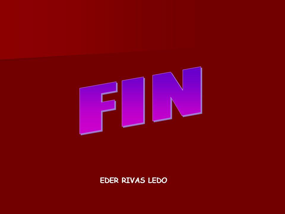 EDER RIVAS LEDO
