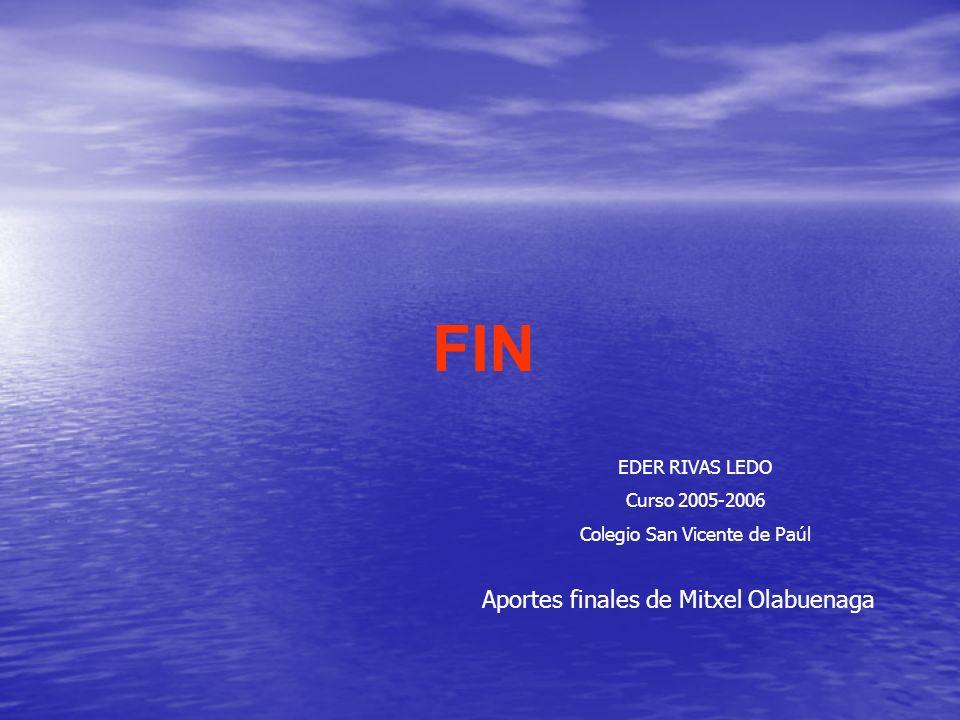 FIN Aportes finales de Mitxel Olabuenaga EDER RIVAS LEDO Curso 2005-2006 Colegio San Vicente de Paúl