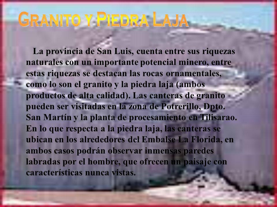 Este trabajo fue realizado por alumnas del Colegio Nº28 Juan Martín de Pueyrredón de la localidad de La Toma, provincia de San Luis (Argentina), Luciana Arias y Rocio Pérez.
