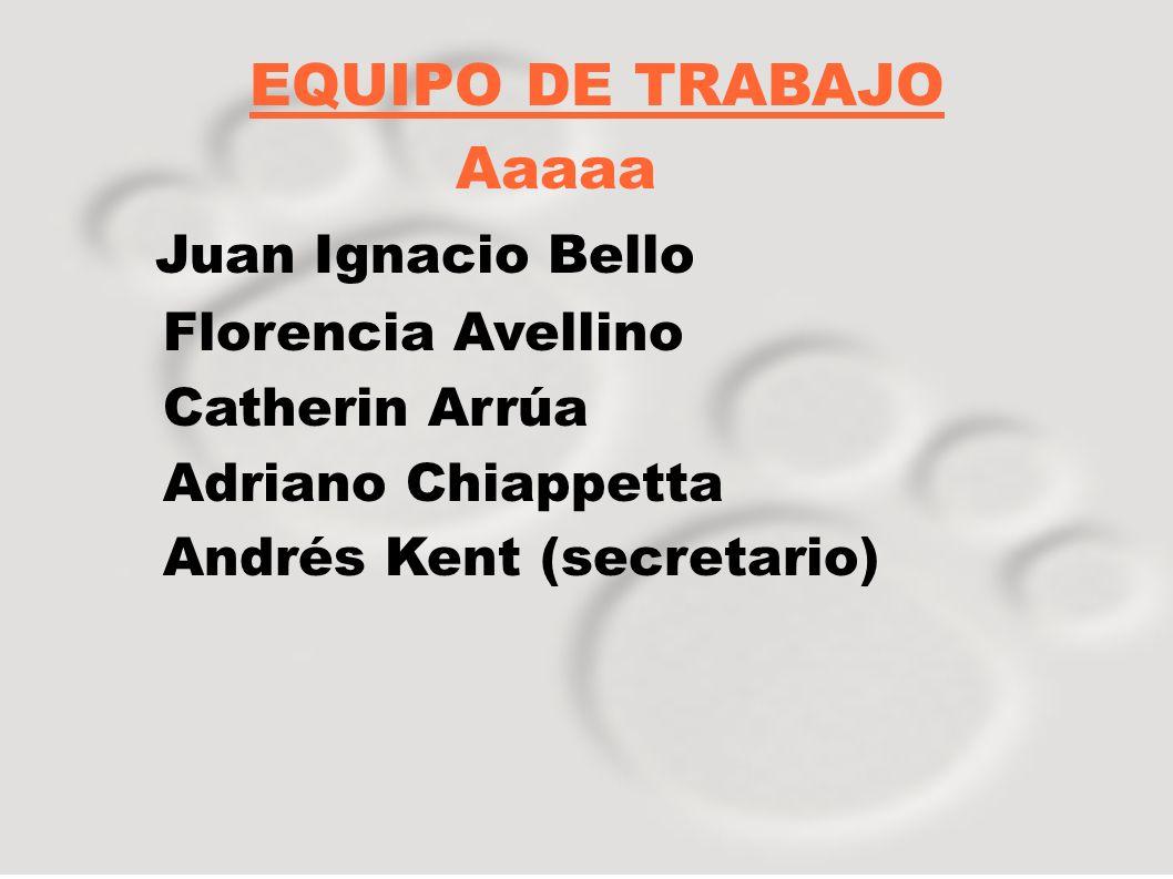 EQUIPO DE TRABAJO Aaaaa Juan Ignacio Bello Florencia Avellino Catherin Arrúa Adriano Chiappetta Andrés Kent (secretario)