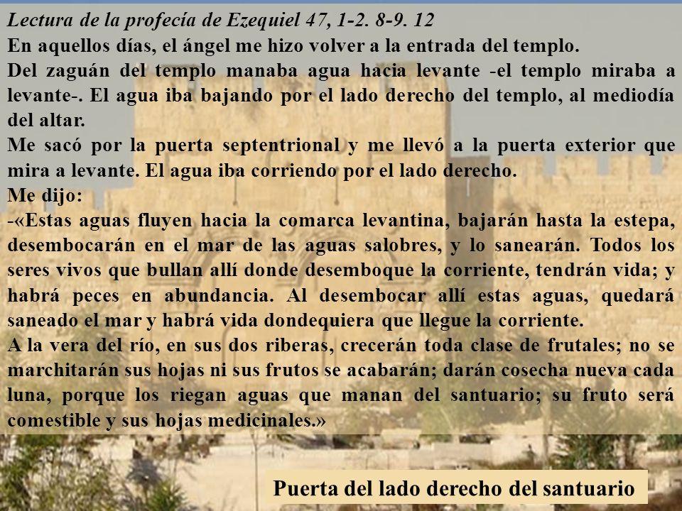 Lectura de la profecía de Ezequiel 47, 1-2.8-9.