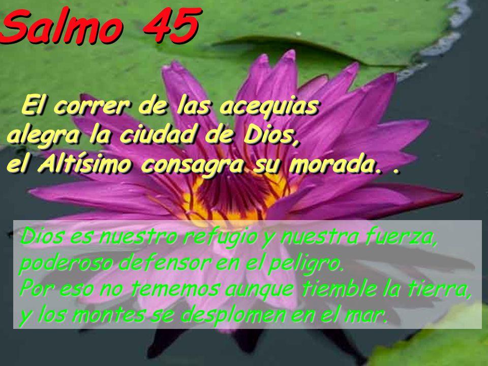 Salmo 45 El correr de las acequias El correr de las acequias alegra la ciudad de Dios, el Altísimo consagra su morada..