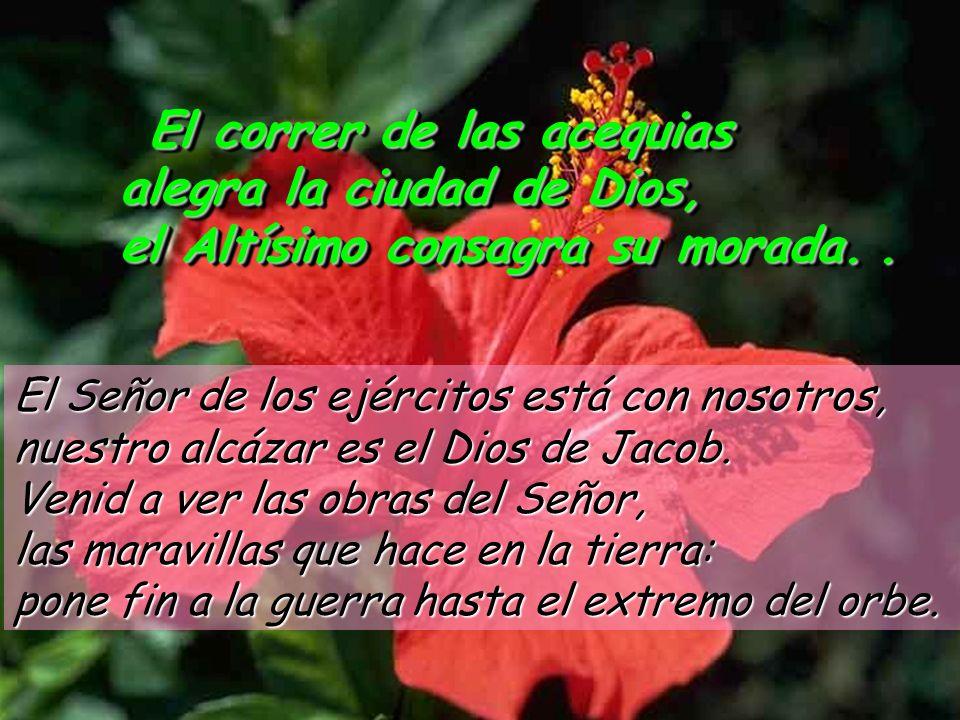 El correr de las acequias alegra la ciudad de Dios, el Altísimo consagra su morada. Teniendo a Dios en medio, no vacila; Dios la socorre al despuntar