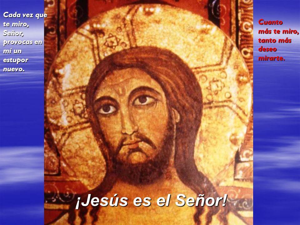 Cada vez que te miro, Señor, provocas en mí un estupor nuevo. Cuanto más te miro, tanto más deseo mirarte. ¡Jesús es el Señor!