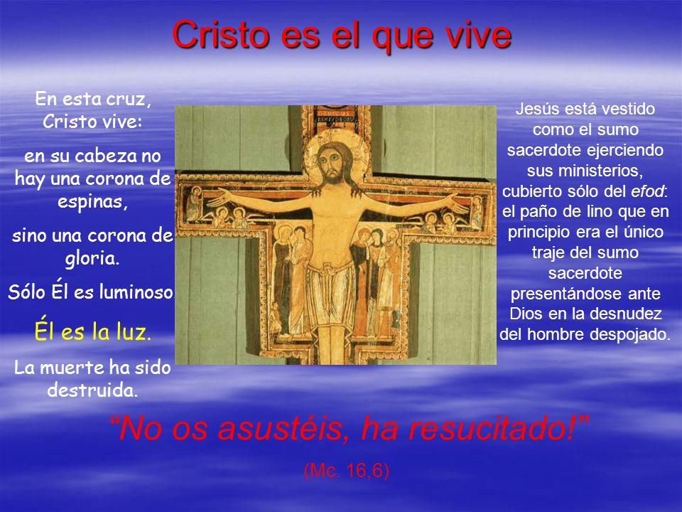 Cristo es el que vive En esta cruz, Cristo vive: en su cabeza no hay una corona de espinas, sino una corona de gloria. Sólo Él es luminoso. Él es la l