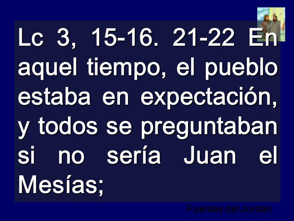 Lc 3, 15-16. 21-22 En aquel tiempo, el pueblo estaba en expectación, y todos se preguntaban si no sería Juan el Mesías; Fuentes del Jordán