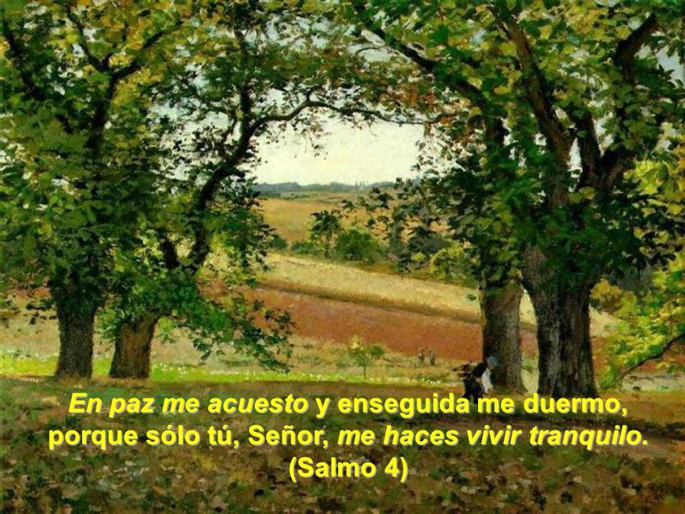 En paz me acuesto y enseguida me duermo, porque sólo tú, Señor, me haces vivir tranquilo. (Salmo 4)