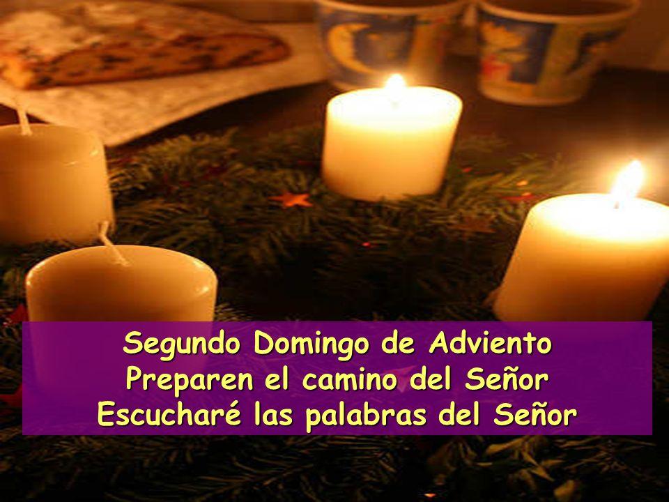 Segundo Domingo de Adviento Preparen el camino del Señor Escucharé las palabras del Señor