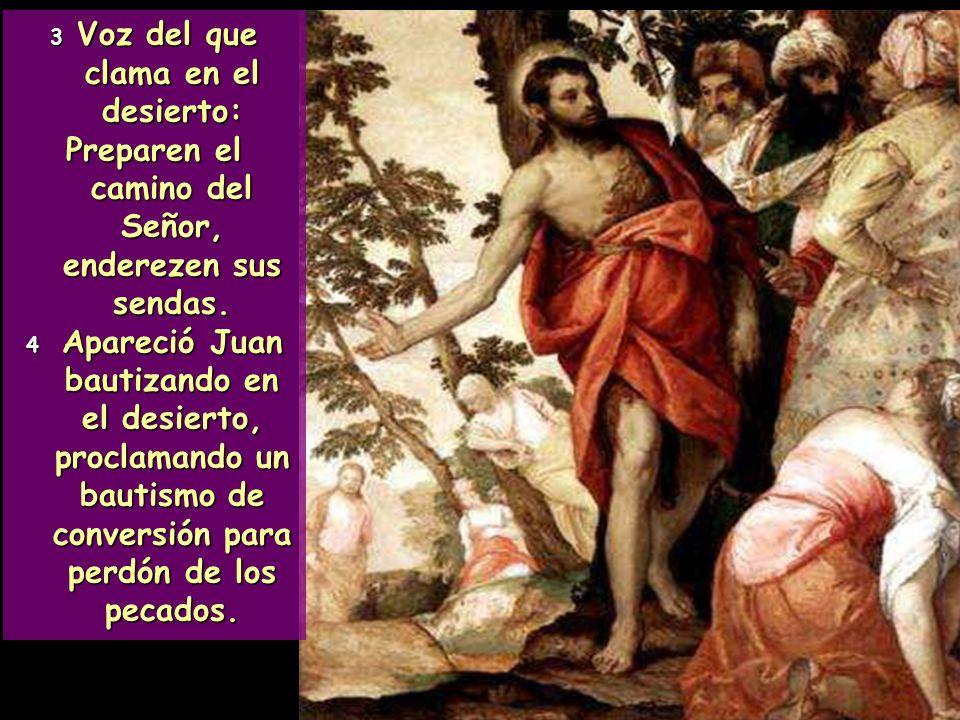El pregón del Bautista culmina con un verso inolvidable: Todos verán la salvación de Dios Todos verán la salvación de Dios