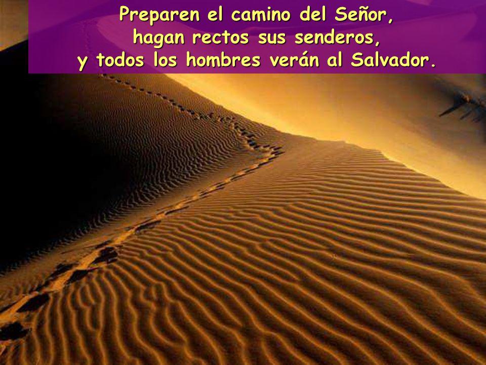 Predicaba: Enderezen los caminos del Señor.