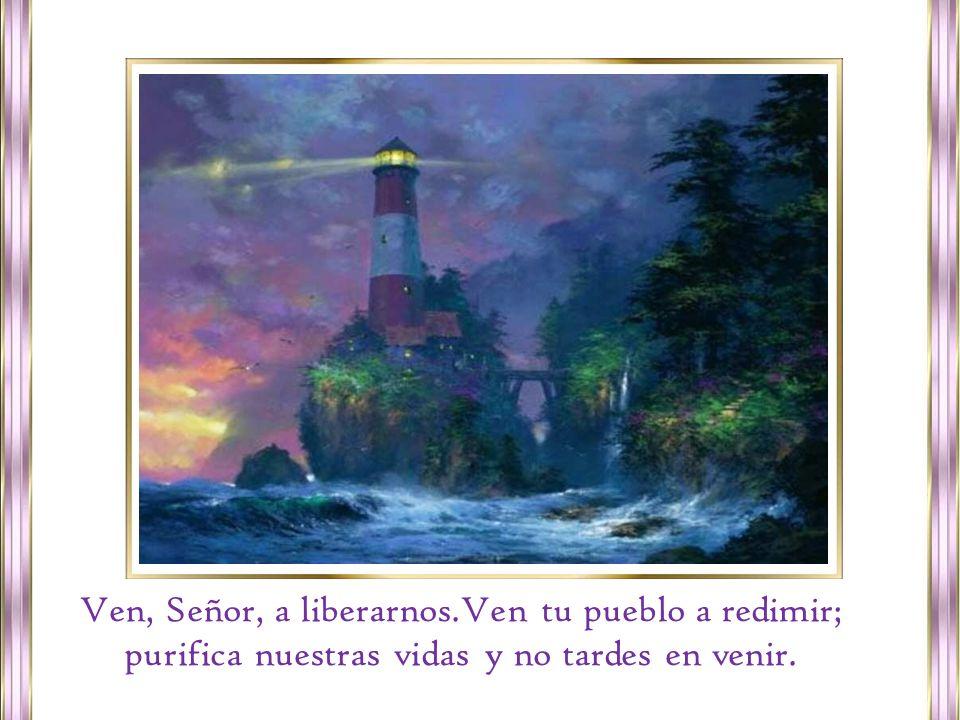 Preparemos los caminos. Ya se acerca el Salvador y salgamos, peregrinos, al encuentro del Señor.
