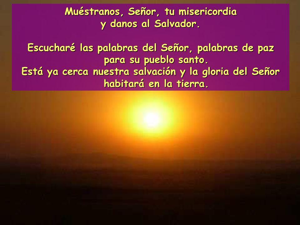 Consuélense y alégrense, desterrados de Sión, que ya viene, ya está cerca. Él es nuestra salvación.