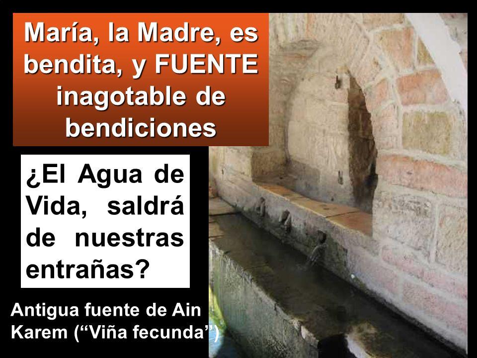 ¿El Agua de Vida, saldrá de nuestras entrañas? María, la Madre, es bendita, y FUENTE inagotable de bendiciones Antigua fuente de Ain Karem (Viña fecun
