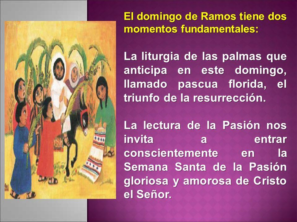 El domingo de Ramos tiene dos momentos fundamentales: La liturgia de las palmas que anticipa en este domingo, llamado pascua florida, el triunfo de la