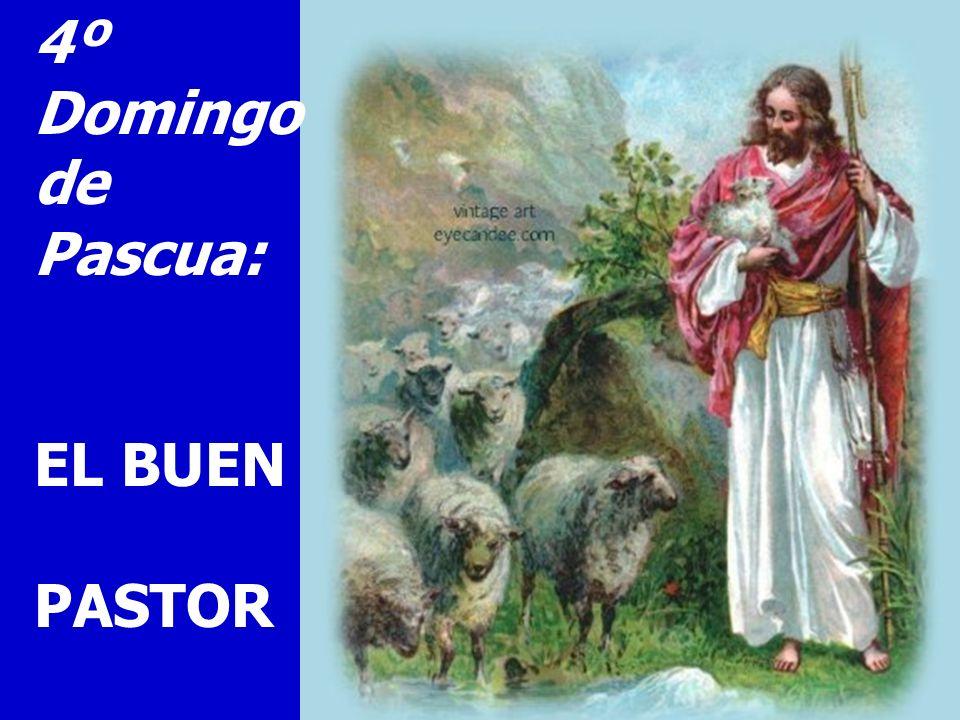 4º Domingo de Pascua: EL BUEN PASTOR