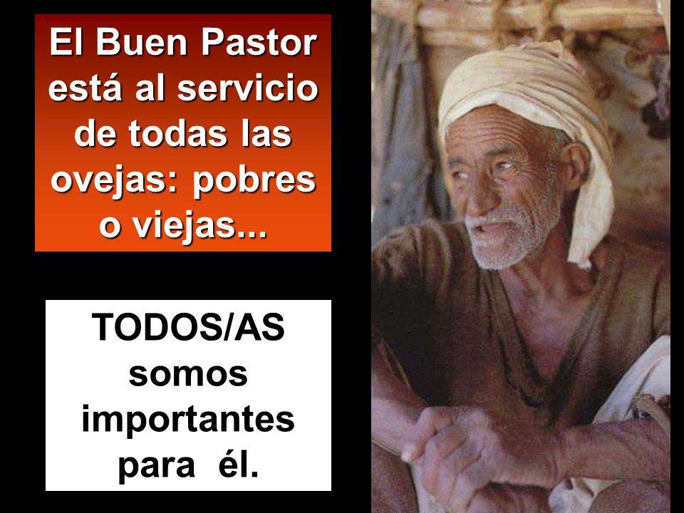 El Buen Pastor está al servicio de todas las ovejas: pobres o viejas... TODOS/AS somos importantes para él.